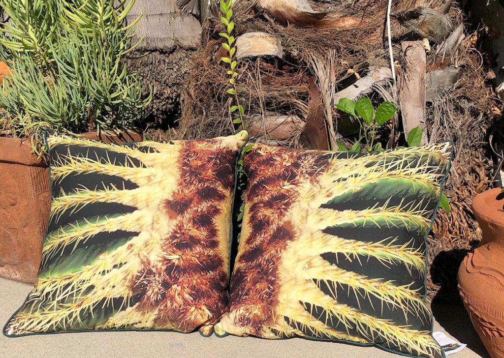 pair of succulent design pillows
